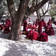Tibetian monks learn how to put and answer philosophical questions